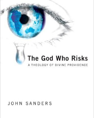 The God Who Risks: A Theology of Divine Providence
